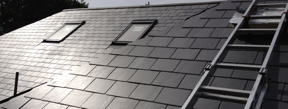 Roofers horsham sussex cane roofing for Modern roof shingles